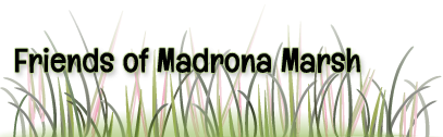 Friends of Madrona Marsh